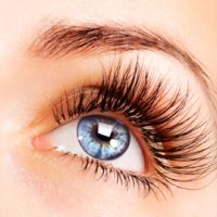 Lone Tree eyelash extensions